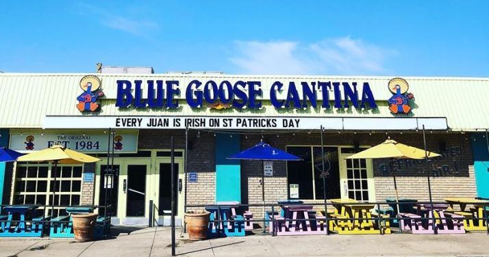blue-goose-cantina.jpg
